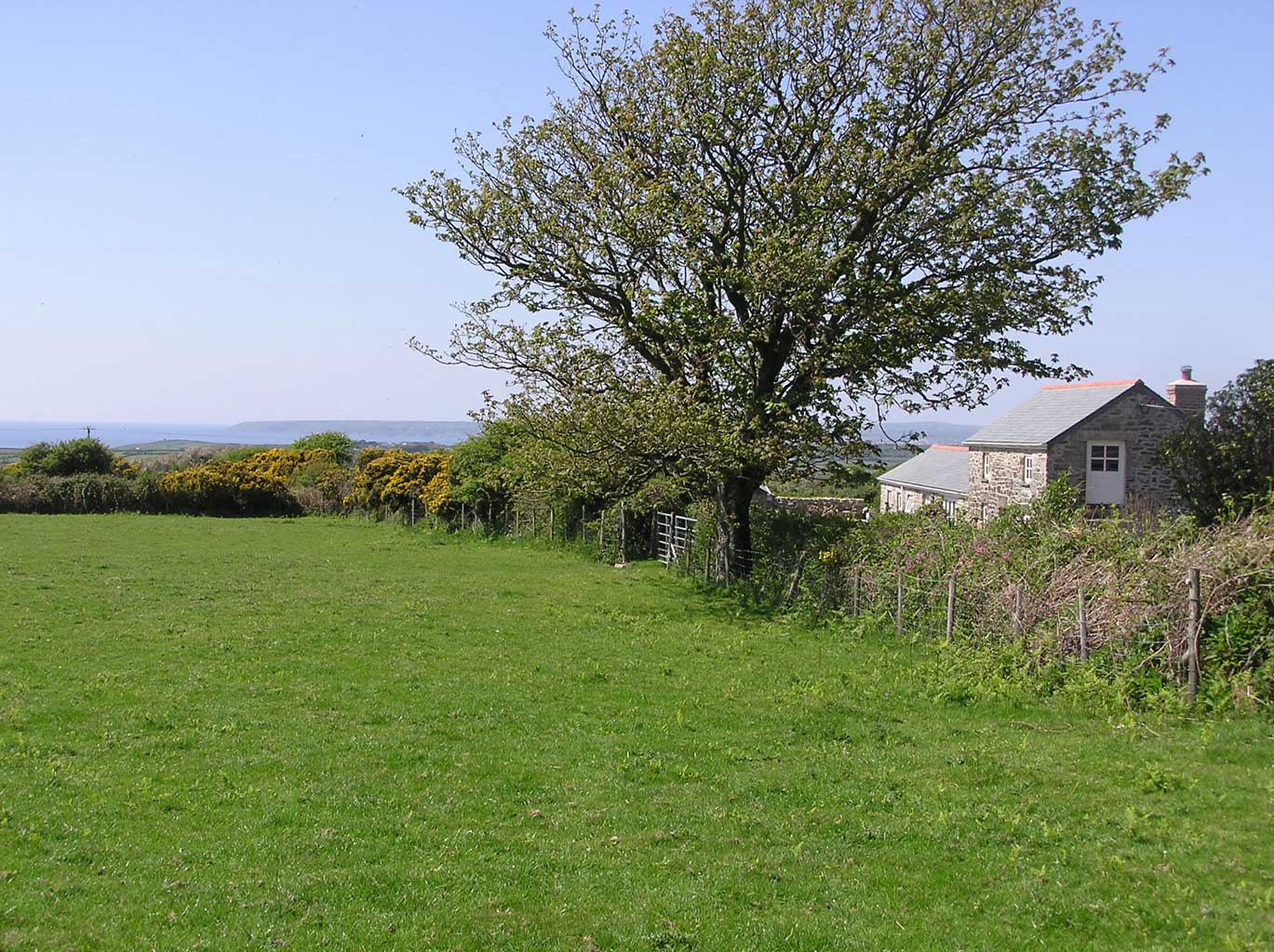 Mazey's Cottage from the field in front (The Badger Field)
